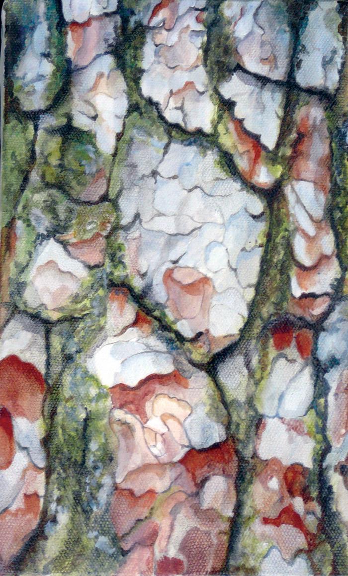 Ecorce de pin : huile sur toile. Dim. 16 x 27 cm