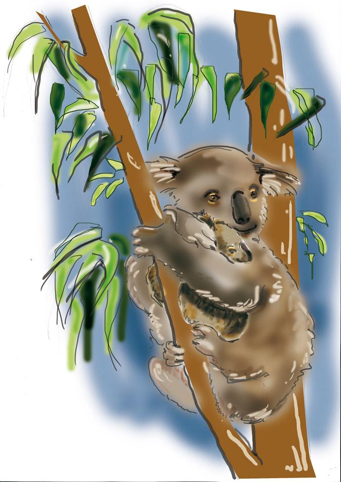 Quant au kangourou de la salle de pré-travail, il partage la vedette avec une maman koala et son petit. Ici la maquette.